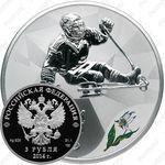 3 рубля 2014, следж хоккей