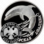 1 рубль 1995, афалина