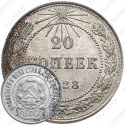Серебряная монета 20 копеек 1923, ости колосьев над щитом короткие
