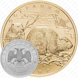 100 рублей 2008, бобр (СПМД)