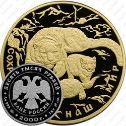 10000 рублей 2000, барс