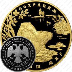 10000 рублей 2008, бобр
