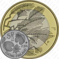5 евро 2014, дикая природа