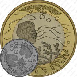 5 евро 2014, вода