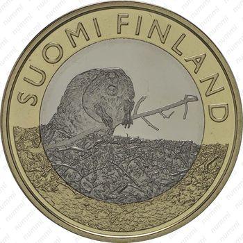 5 евро 2015, бобр - Реверс