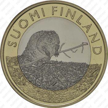 Медно-никелевая монета 5 евро 2015, бобр (реверс)