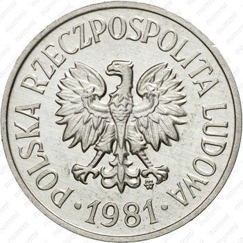 20 грошей 1981 - Аверс