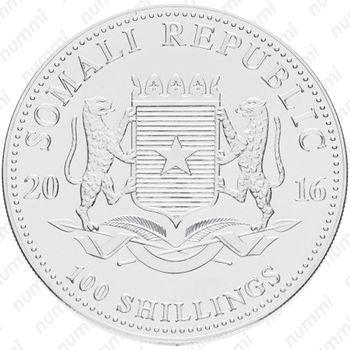 100 шиллингов 2016, слон - Аверс