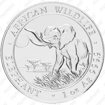 100 шиллингов 2016, слон - Реверс