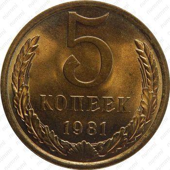 Латунная монета 5 копеек 1981 (реверс)