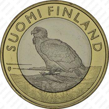 Медно-никелевая монета 5 евро 2014, орлан-белохвост (аверс)